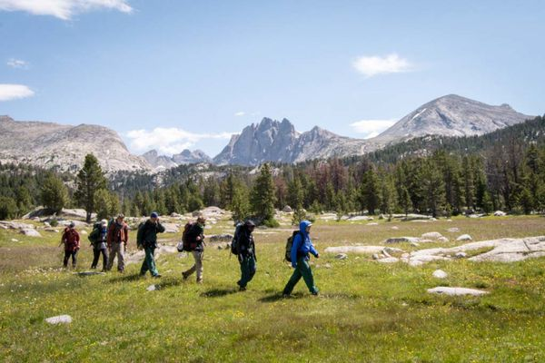 Group of backpackers hike across a grassy meadow with pines and rocky peaks in the background.